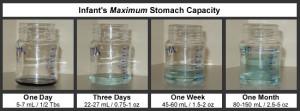 stomach capacity 1
