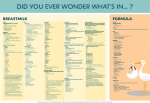Breastfeeding Formula Ingredients