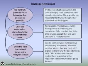 Tantrum Flow Chart