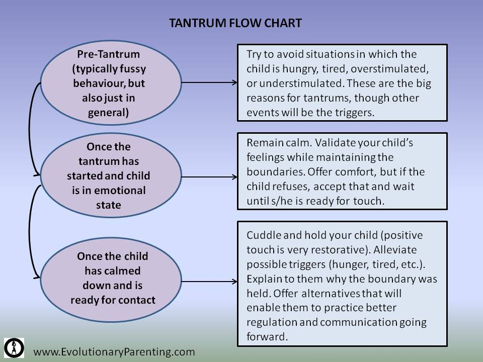 Helping Kids Find Alternatives To The Tantrum Evolutionary